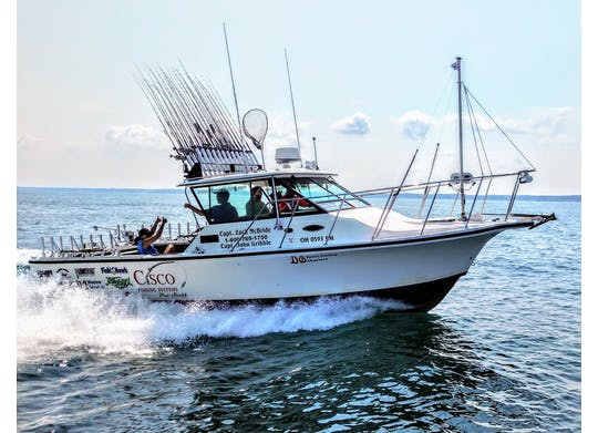 DB Sport Fishing Boat