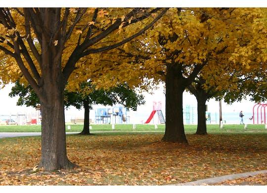 Lakeshore Park (30)