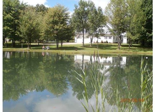 Bear Creek Farm B&B