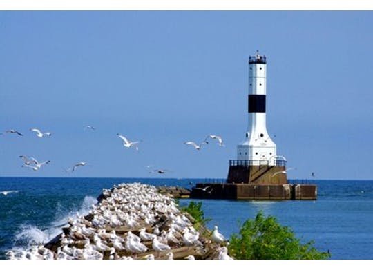 Conneaut Lighthouse With Birds