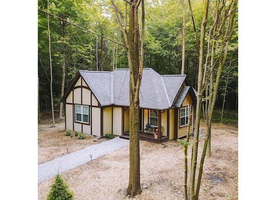 Vineyard Woods