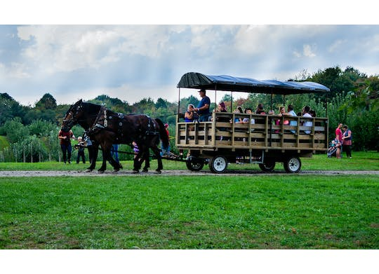 Brant's Apple Orchard wagon ride